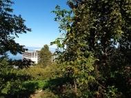 Участок в Махинджаури с видом на море и на город Батуми, Грузия. Фото 3