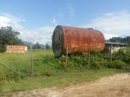 Продается действующий сельскохозяйственный комплекс. Грузия. Фото 6
