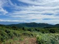 Участок для инвестиций. Земельный участок на продажу в Озургети, Грузия. Фото 6
