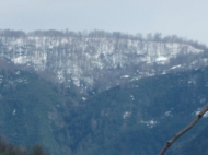 Дом в Капрешуми с видом на море и город. Дома с видом на море в Батуми, Аджария, Грузия. Фото 3