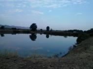 Земельный участок с озером в Марнеули, Грузия. Готовый бизнес. Фото 10