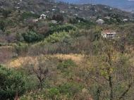 в окрестности Чакви продаётся земельный участок с видом на море и горы. Фото 4