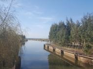 Земельный участок у Черного моря в Уреки. Участок на берегу реки в Уреки, Грузия. Фото 1