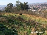 Продается земельный участок в Батуми, Грузия. Участок с видом на море.  Фото 4