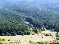 Продается земельный участок в курортном районе Рача-Лечхуми, Грузия. Фото 3