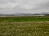 Продается земельный участок у озера Базалети, Грузия. Фото 2