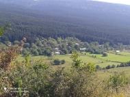 Продается земельный участок в живописном месте. Продается земельный участок в курортном районе Рача-Лечхуми, Грузия. Фото 10
