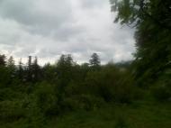 Участок в тихом районе. Махинджаури,Аджария,Грузия. Фото 2