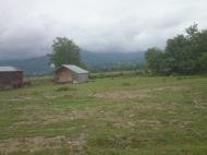 Участок в Хелвачаури,Аджария,Грузия. Фото 3