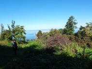 В Махинджаури продается участок с видом на море, от моря 500 метров. Фото 2