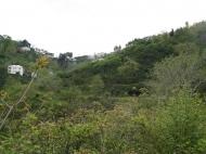 Участок в Батуми. Купить земельный участок в Батуми,Грузия. Фото 3