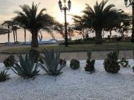 """""""Dreamland Oasis in Chakvi"""" - ელიტური 5 ვარსკვლავიანი სასტუმროს ტიპის საცხოვრებელი კომპლექსი, განთავსებულია საქართველოს შავი ზღვის სანაპიროზე ჩაქში. ფოტო 13"""