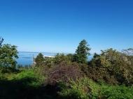 В Махинджаури продается участок с видом на море, от моря 500 метров. Фото 1