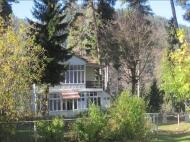Земельный участок с коттеджами  в сосновом лесу в курортном районе в Борджоми, Грузия. Фото 8