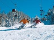 Купить участок на горнолыжном курорте Бакуриани,Грузия. Фото 2