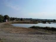 Земельный участок с озером в Марнеули, Грузия. Готовый бизнес. Фото 3