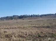Земельный участок в курортном районе Шекветили, Грузия. Фото 2