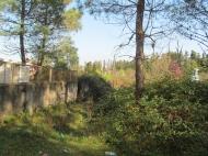 Продается участок в курортной зоне Грузии в Уреки от моря 200метров Фото 3