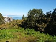 Участок в Махинджаури с видом на море и город Батуми,Грузия. Фото 4