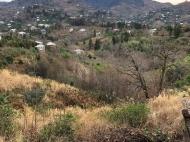 в окрестности Чакви продаётся земельный участок с видом на море и горы. Фото 2