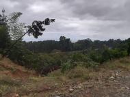 Земельный участок с видом на море в Цихисдзири. Купить земельный участок в Грузии. Фото 8