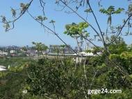 Земельный участок на продажу в Батуми, Грузия. Участок с видом на море. Фото 2
