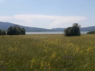 Land for sale near Shaori Lake Investment Racha. Georgia. Photo 1