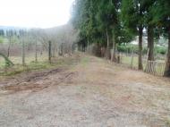 Земельный участок в Батуми с видом на море. Фото 7