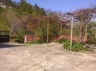 Дом с мандариновым садом в Батуми Фото 15