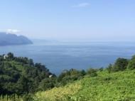 Земельный участок с видом на море в тихом районе Сарпи, Грузия. Фото 1