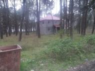 Земельный участок в Шекветили Фото 3