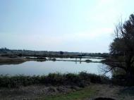 Земельный участок с озером в Марнеули, Грузия. Готовый бизнес. Фото 11
