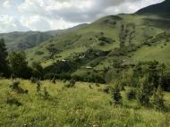 Земельный участок в курортном районе Грузии Фото 20