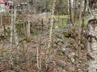 Продается земельный участок в живописном месте. Фото 11