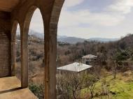 Купить частный дом в курортном районе Кобулети, Грузия. Мандариновый сад, Фруктовый сад. Фото 5