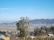 Участок для дачи в Чарнали в пригороде Батуми. Участок с видом на море и город Батуми, Грузия. Фото 3