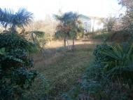 Продается участок в Махинджаури в 300 метрах от моря. Фото 5