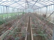Дом с земельным участком и с теплицами для разведения роз в Барцхане, Батуми. Действуюший бизнес. Тепличное хозяйство в Батуми. Фото 1