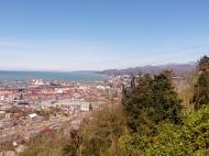 Участок с видом на море и на город Батуми,Грузия. Фото 1