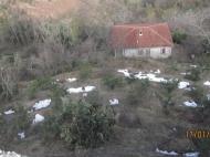 Участок с домом в Батуми Фото 4