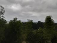 Земельный участок с видом на море в Цихисдзири. Купить земельный участок в Грузии. Фото 5
