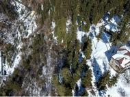 Земельный участок с коттеджами  в сосновом лесу в курортном районе в Борджоми, Грузия. Фото 13