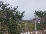 Земельный участок для дачи в Капрешуми. Земельные участки в Капрешуми, Аджария, Грузия. Фото 2