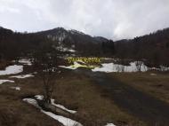 Земельный участок на горнолыжном курорте в Бакуриани. Продается земельный участок в центре Бакуриани, Грузия. Выгодно для инвестиций в Грузии. Фото 5