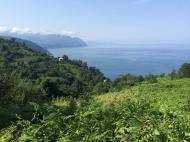 Земельный участок с видом на море в тихом районе Сарпи, Грузия. Фото 3