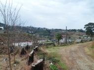 Земельный участок в Батуми с природным родником Фото 1