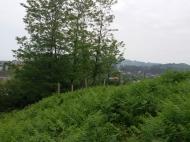 Продается земельный участок в Чакви,Грузия. Фото 3