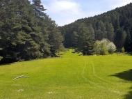 Продается земельный участок в живописном месте. Продается земельный участок в курортном районе Рача-Лечхуми, Грузия. Фото 2