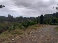 Земельный участок с видом на море в Цихисдзири. Купить земельный участок в Грузии. Фото 7