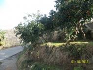 Продается дом в Махинджаури с видом на море Фото 6